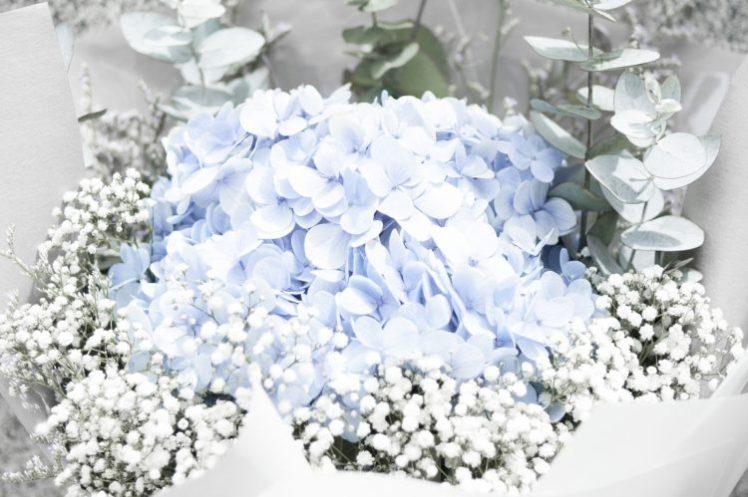 Wedding Something Borrowed Something Blue Hydrangea Flowers Bouquet