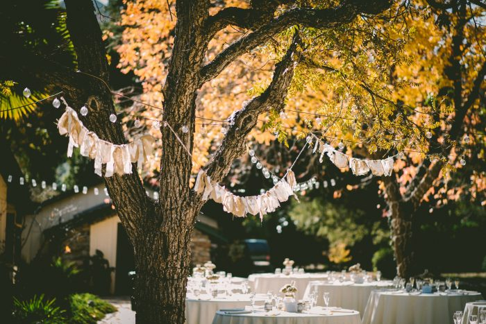 Finding Local Wedding Vendors Tree Decor Fairy Lights